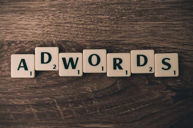 Profesjonalista  w dziedzinie kampani Adwords pomoże i dobierze godziwą metode do twojego biznesu.